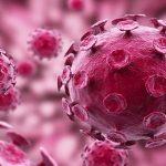 ویروس پاپیلوم انسانی یا HPV
