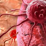 ساخت نانوذرهای چندکاره برای از بین بردن تومور سرطانی