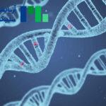 بخش مولکولار و ژنتیک